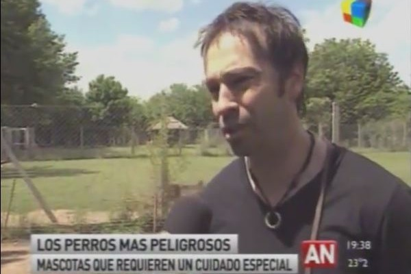 Gustavo Bianco Escuela Canina GB con america noticias