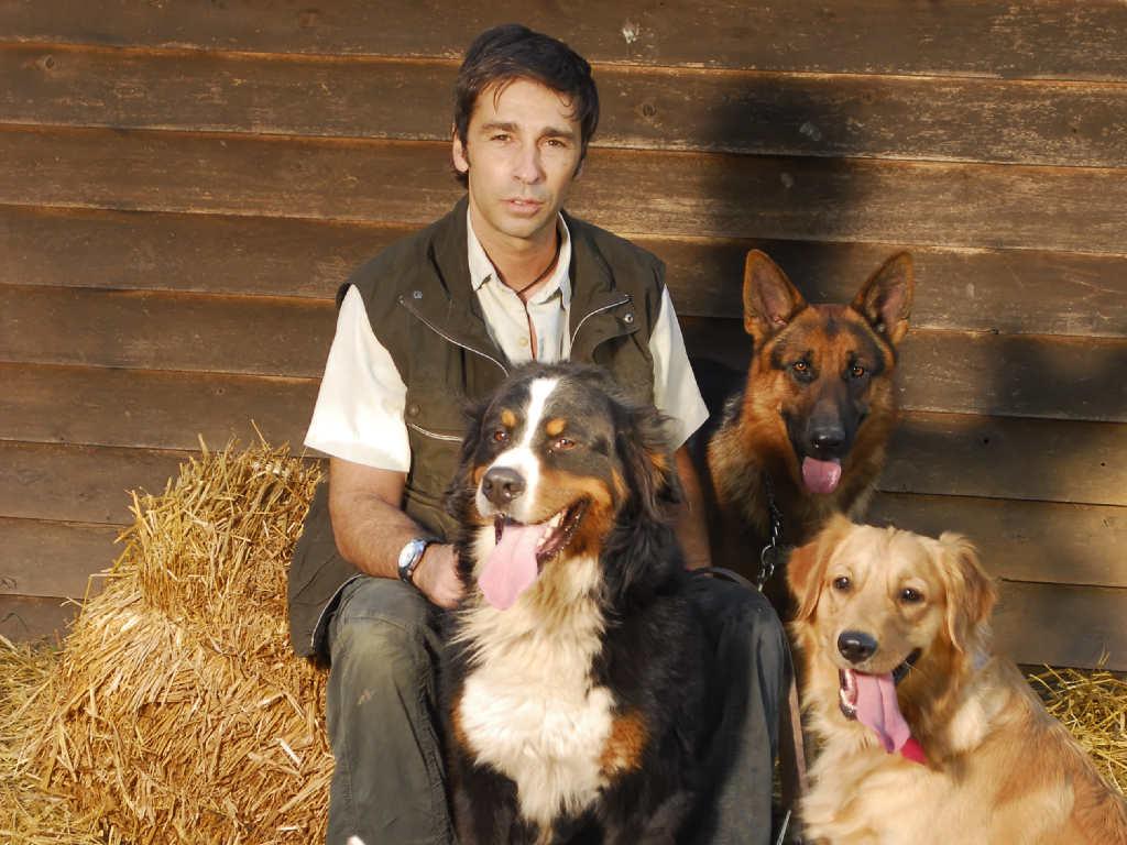 Prevención de conductas indeseables en cachorros
